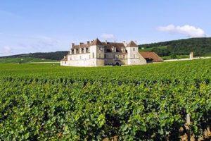 a2-cote-viticole