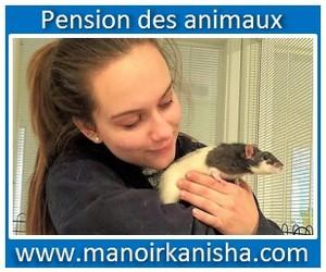 animaux-1.jpg