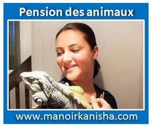 animaux-3.jpg