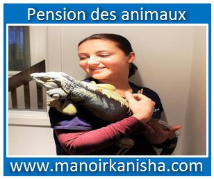 image-du-manoir-4.png