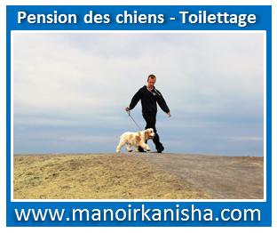image-pour-manoir-11.png