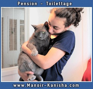manoir-kanisha-chat.jpg